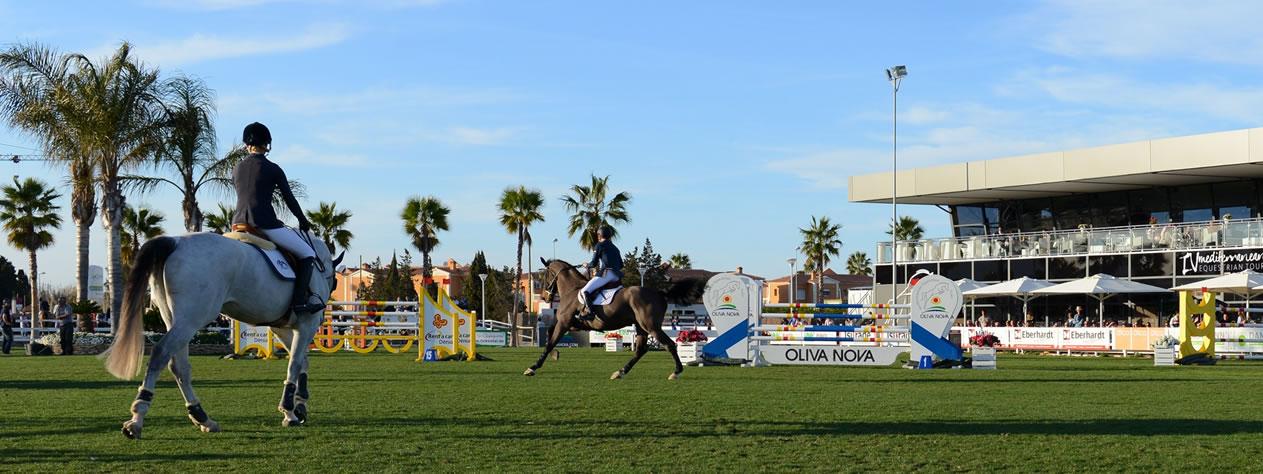 mediterranean_equestrian_oliva_transport_chevaux