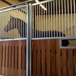 nouveaux_box_service_equestre_bois_joli